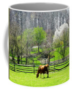 Cow Grazing In Pasture In Spring Coffee Mug