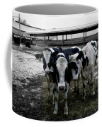 Cow Hugs Coffee Mug