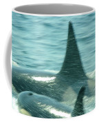 Cow Orca And Her Calf Coffee Mug