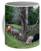 Cows Of Color Coffee Mug