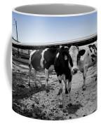 Cows Three In One Coffee Mug