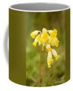 Cowslip   Primula Veris Coffee Mug