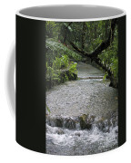 Coyaba River Gardens 6 Coffee Mug
