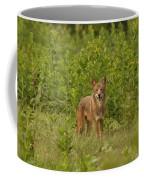Coyote Happy Coffee Mug