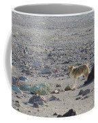 Coyote In Death Valley National Park -a Coffee Mug