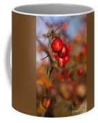 Crab Apple Bright Coffee Mug