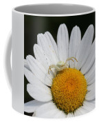 Crab Spider On Daisy Coffee Mug