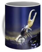 Crab Star Coffee Mug