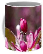 Crabapple Bud Coffee Mug