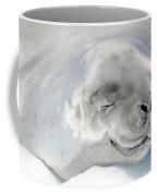 Crabeater Seal Coffee Mug