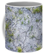 Cracked Earth Background Coffee Mug