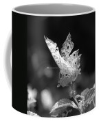 Cracked Wing Coffee Mug