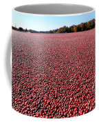 Cranberry Bog In New Jersey Coffee Mug