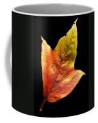 Cranberry Tree Leaf Isolated On White Coffee Mug