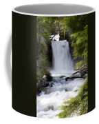 Crandel Creek Falls Coffee Mug