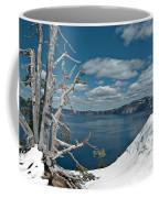 Crater Lake Tree Coffee Mug