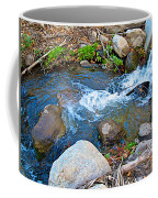 Creek Entering Andreas Canyon In Indian Canyons-ca Coffee Mug