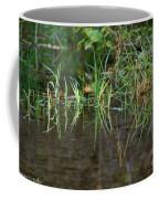 Creek Grass Coffee Mug