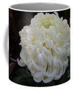 Creme Au Lait Coffee Mug