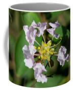 Crepe Myrtle Blossom Ring Coffee Mug