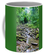 Cresheim Creek Coffee Mug