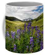Crested Butte Lupines Coffee Mug
