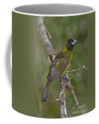 Crimson-collared Grosbeak Coffee Mug