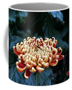 Crimson Tide Irregular Incurve Mum Coffee Mug