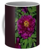 Crinoline Coffee Mug