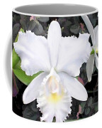 Crisp White Orchids In A Shady Garden Coffee Mug