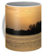Crocodile Eye Coffee Mug