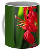 Crocosmia Named Lucifer Coffee Mug