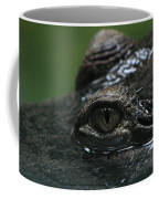 Croc's Eye-1 Coffee Mug