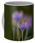 Crocus Ethereal Coffee Mug