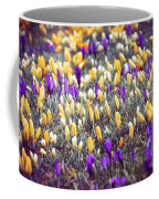 Crocus Field Coffee Mug