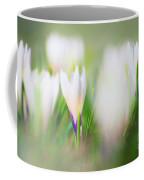 Crocus Meadow 3 Coffee Mug