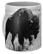 Crossing The Land Coffee Mug