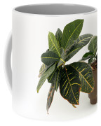 Croton Houseplant Coffee Mug