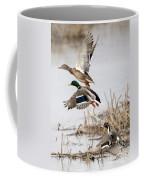 Crowded Flight Pattern Coffee Mug
