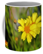 Crown Daisies  Coffee Mug