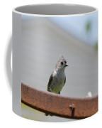 Crown Feathers Coffee Mug