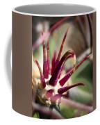 Crown Coffee Mug by Kelley King
