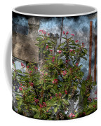 Crown Of Thorns - Featured In Beauty Captured And Nature Photography Groups Coffee Mug