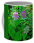 Crown Vetch And Catnip In Pipestone National Monument-minnesota Coffee Mug