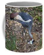 Crowned Crane And Eggs Coffee Mug