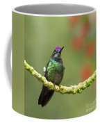 Crowned Hummingbird Coffee Mug