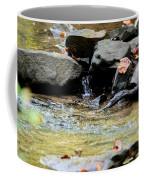 Crystal Clear Waters Of Hurricane Branch Coffee Mug