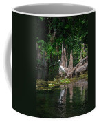 Crystal River Egret Coffee Mug by Skip Willits
