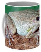Cuban Tree Frog Osteopilus Coffee Mug