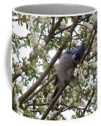 Cuddling The Blossoms Coffee Mug